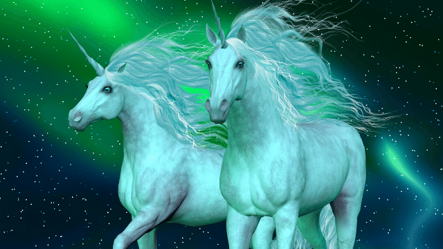 Unicorn images and pictures real beautiful cute hd ...